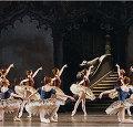 Гастроли Парижской оперы в Новосибирске